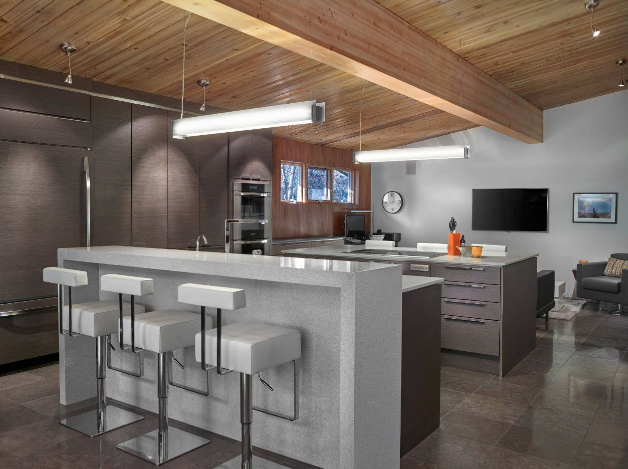 100+ Photo Design Ideas of Modern, Comfortable IKEA Kitchens. Wooden ceiling with open beams and gray futuristic island