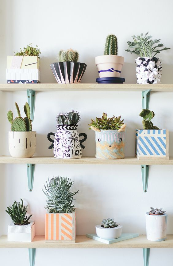 Small pots for the cactii and other plans