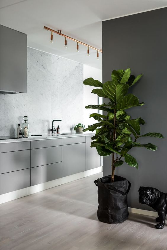 Large tub for growing living plant