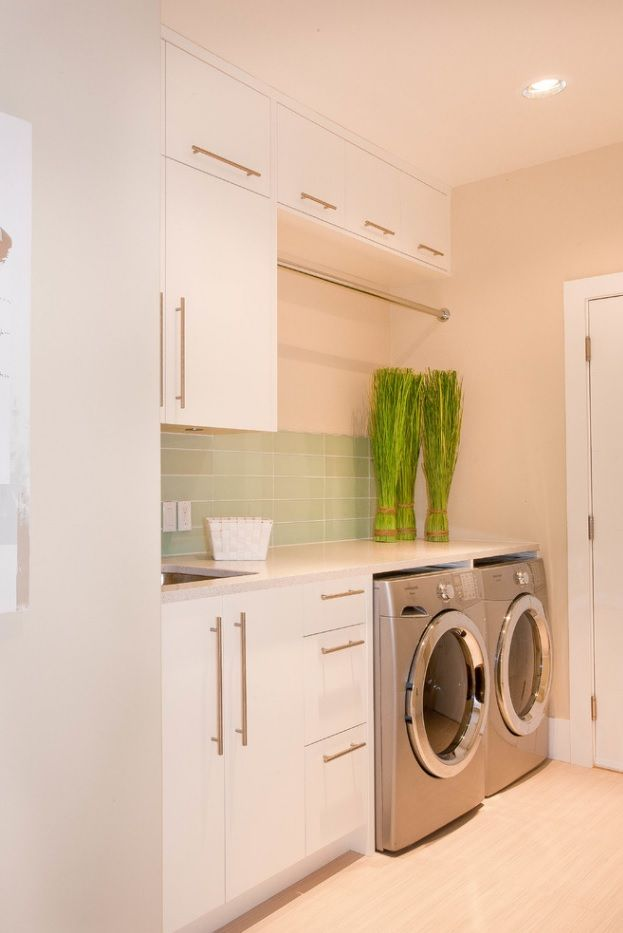 Laundry Allocation Options for Modern Home Interior. Separated technical premises with living plants look so fresh