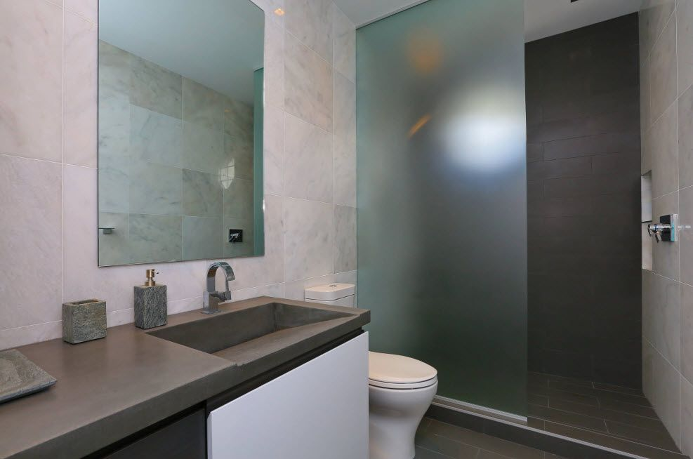 Gray vanity and shower partition with intimate translucent glass screen