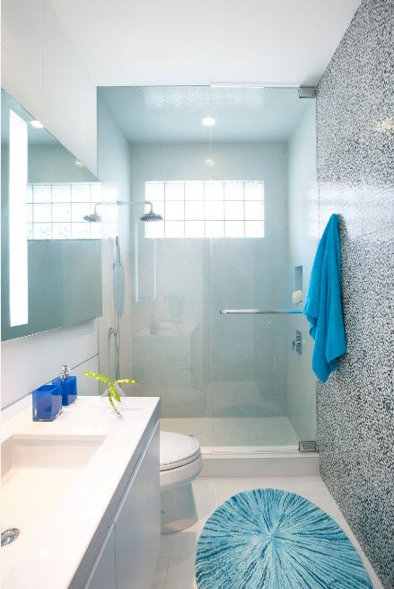 Modern styled bathroom with glass screen separating shower zone