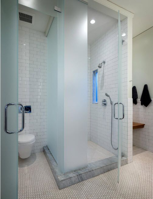 Glass Bathroom Screen. Types, Design, Interior Application. Matted partition to the toilet