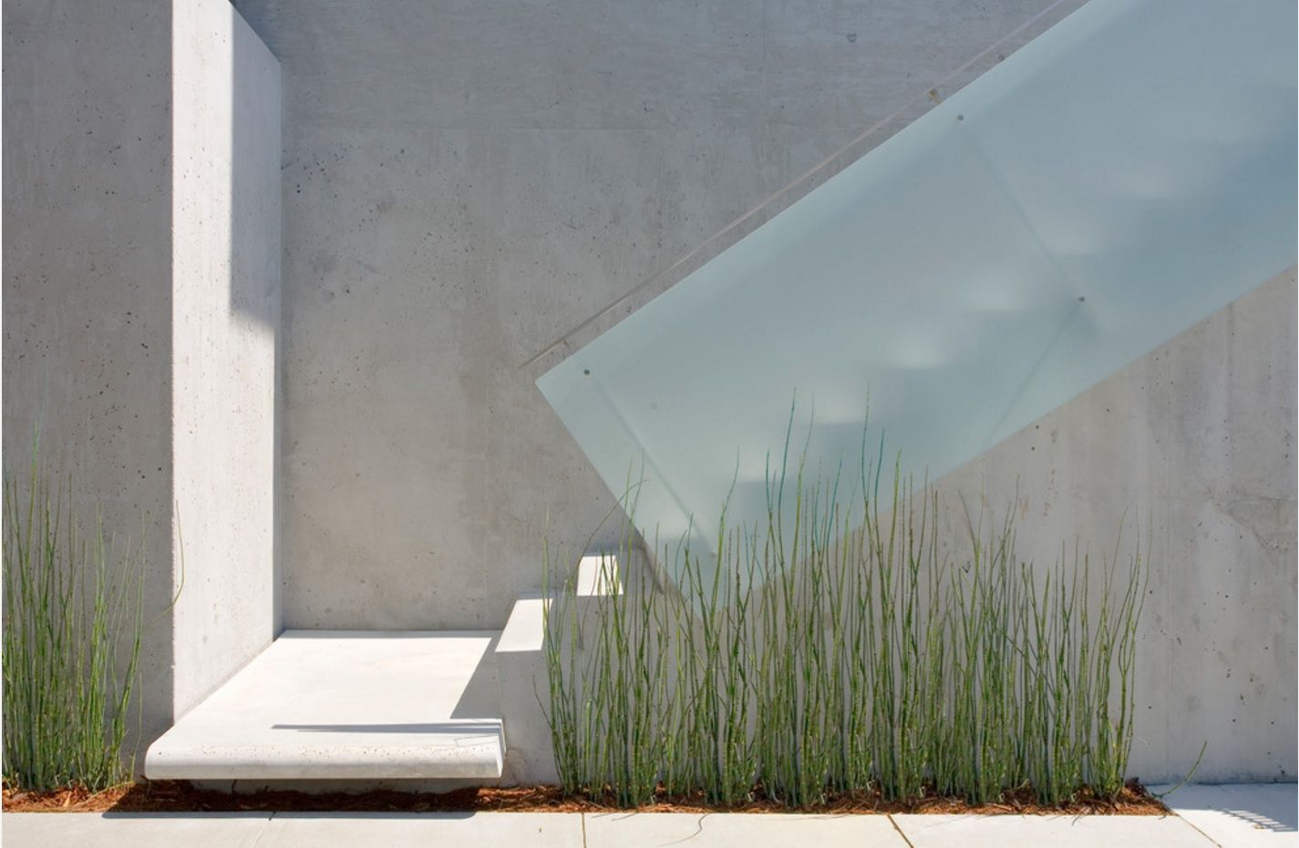 Modern and even futuristic glass and concrete design of the staircase with notes of eco