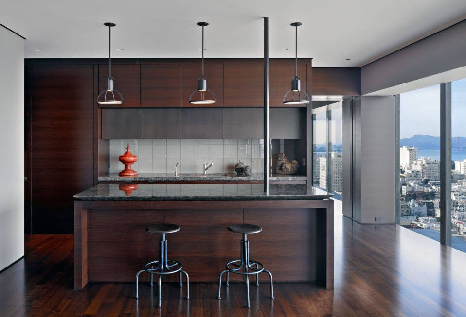 Wenge Color Modern Interior Design Ideas. Noble dark wood for modern kitchen