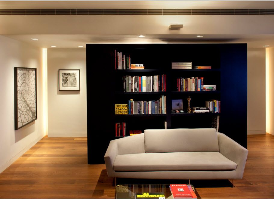 Shelving as Zoning Element & Storage for Modern Interior. Dark rack structure in the large living