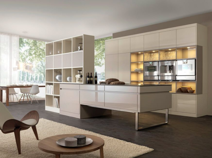 Kitchen zone in studio apartment zone by island and slim shelving