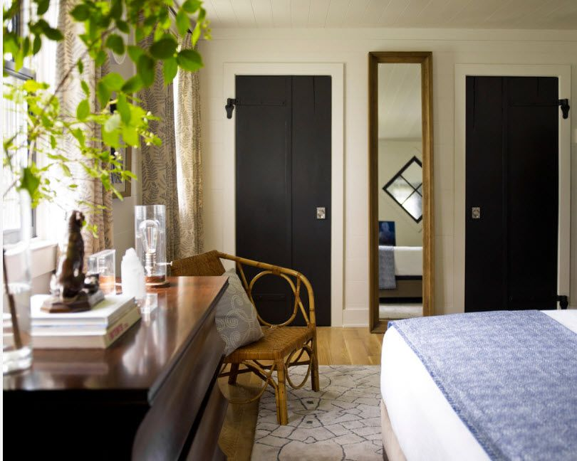 Interior Doors. Essential Element of Modern Apartment. Very narrow accentual black door in the mixed styled space