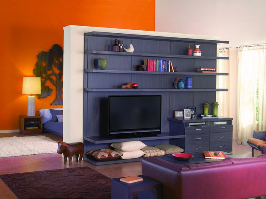 Succesful design of the front wall zone shelving with TV