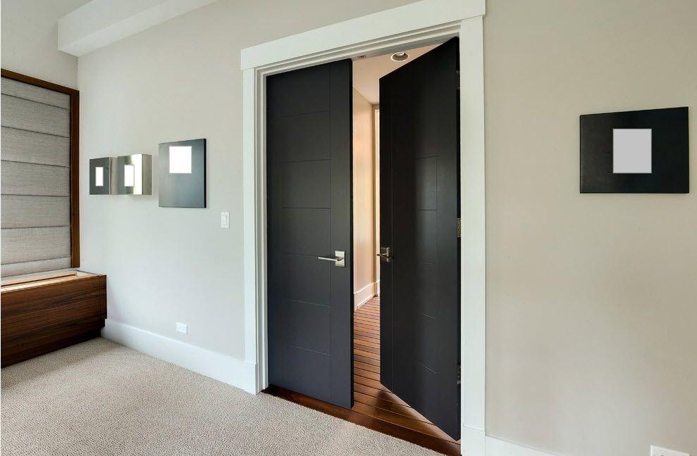 Black swinging interior doors inthe modern hall interior