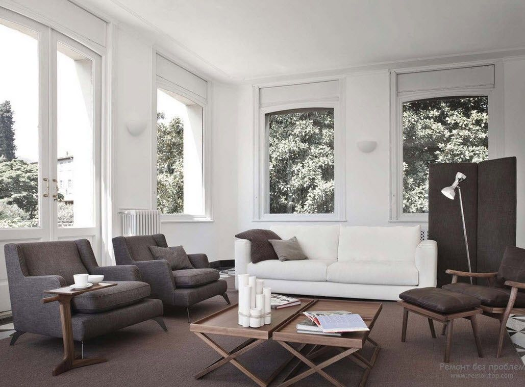 White large living room with brown furniture and rug