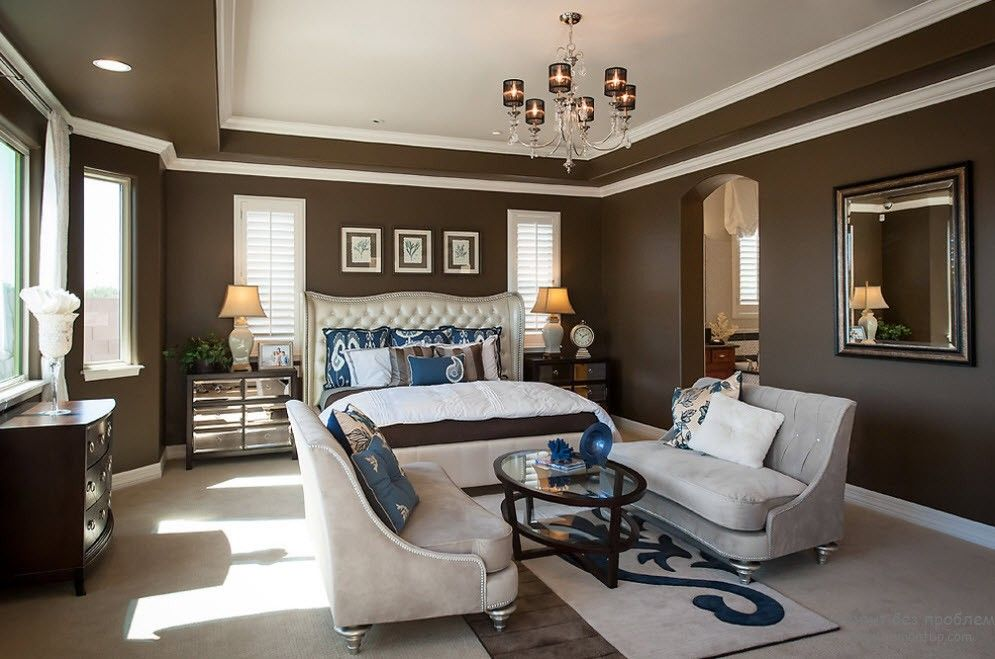 Brown Color Interior Decoration Ideas. Kitchen, Bedroom, Living Room. Classic style and white ceiling in spacious premises