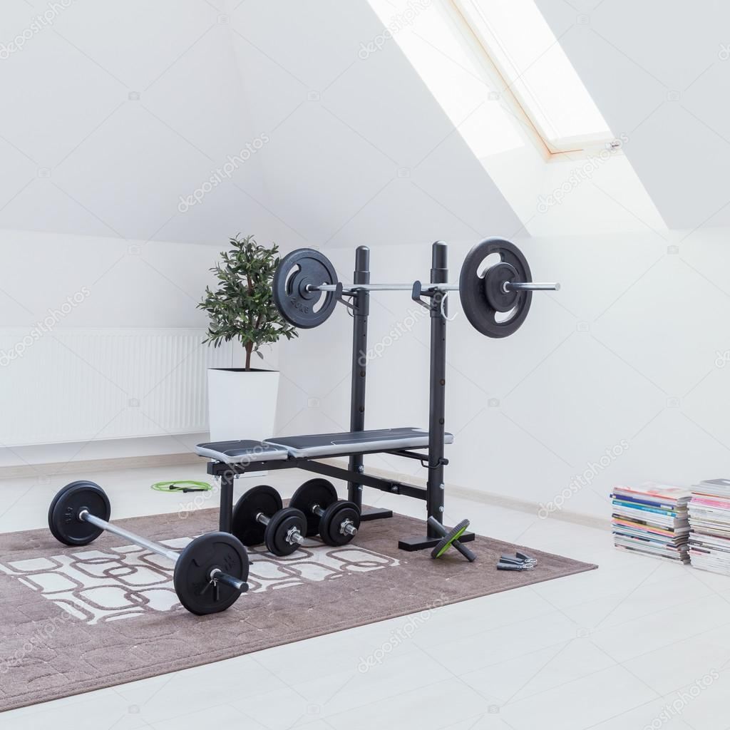 What Do You Need to Create a Home Gym - Small Design Ideas