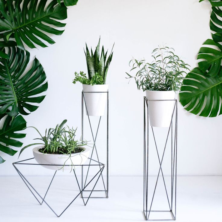 Flower Stand as Functional & Interior Decorating Element. Unusual form for the metal construction in the futuristic style