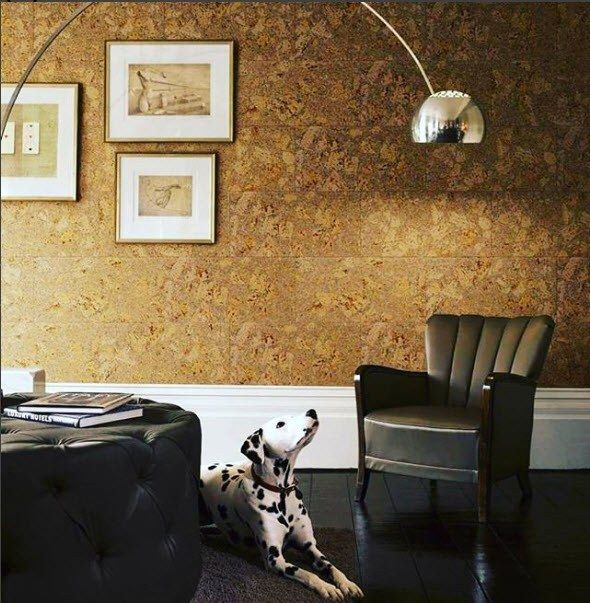 Natural texture and color for the walls pasted with cork wallpaper
