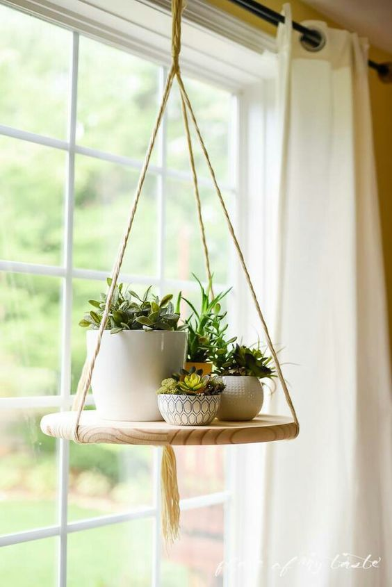 Suspended wooden plate on the rope to place a flowerbed