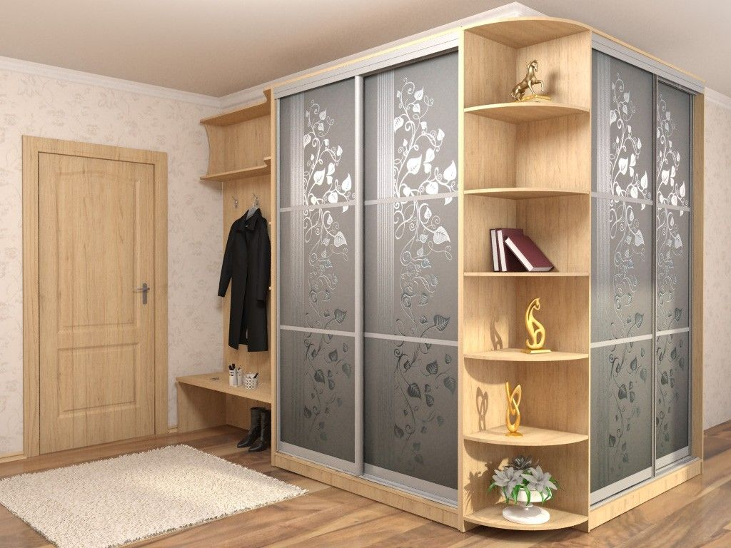 Modern Closet Types & Variants for Hallway Interior with Photos. Partly opened, partly cabinet design of the hall wardrobe