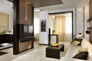 Fabulous idea of the central accent partition in the living room with TV-set