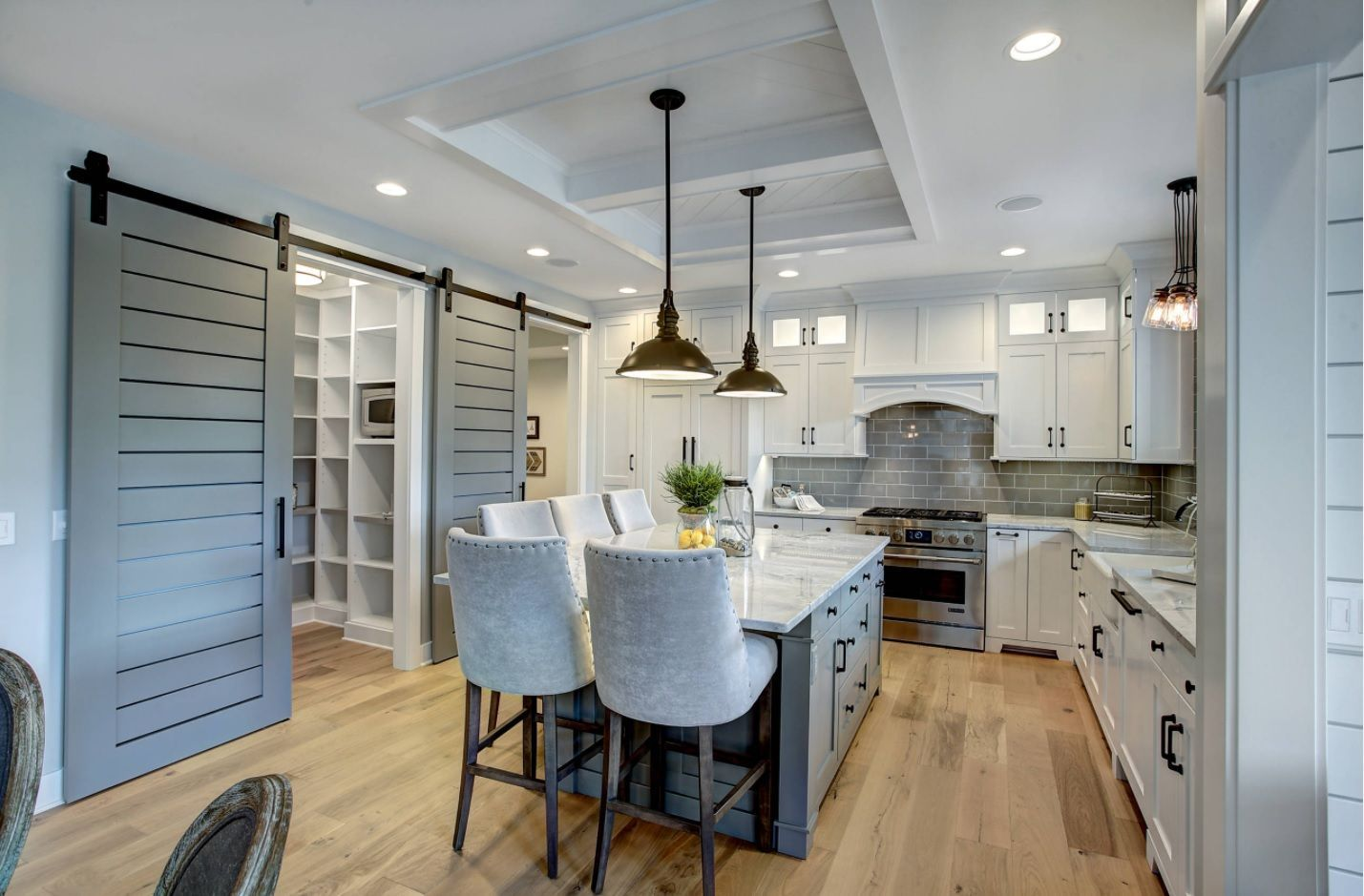 Common space of combined kitchen, wardrobe and entrance in Classic light color theme