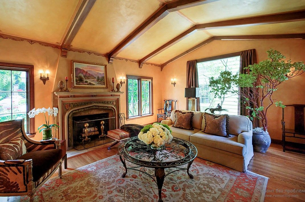 Sandy color scheme and Persian rug in the living room with fireplace