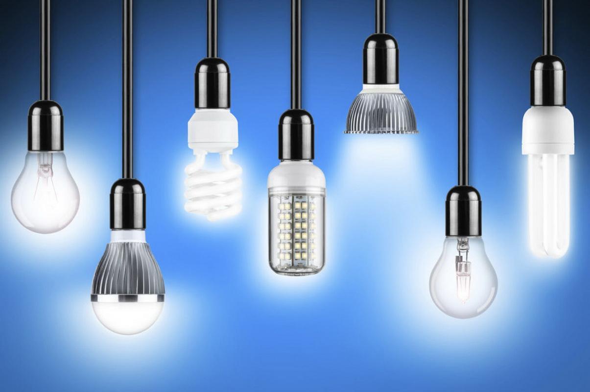 Types of bulbs