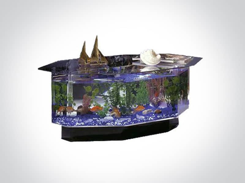 Aquarium with underwater life