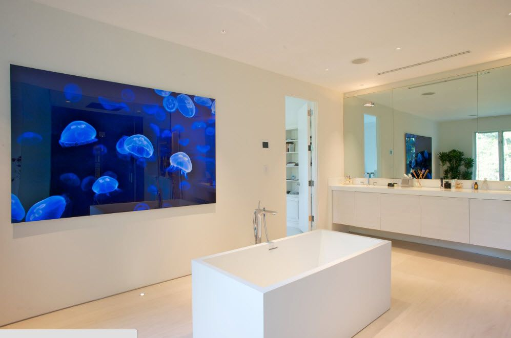 Acrylic Bathtub as the Highlight of Modern Bathroom Interior. Aquarium right at the bathroom with central placed square bathtub
