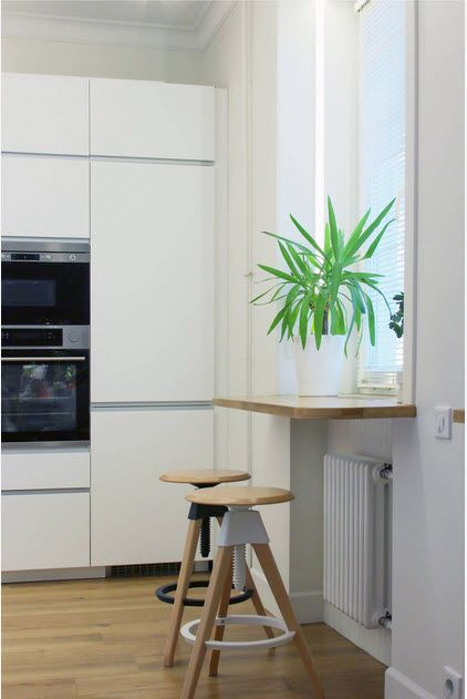 Aloe at the window sill of the modern kitchen with glossy modular kitchen set