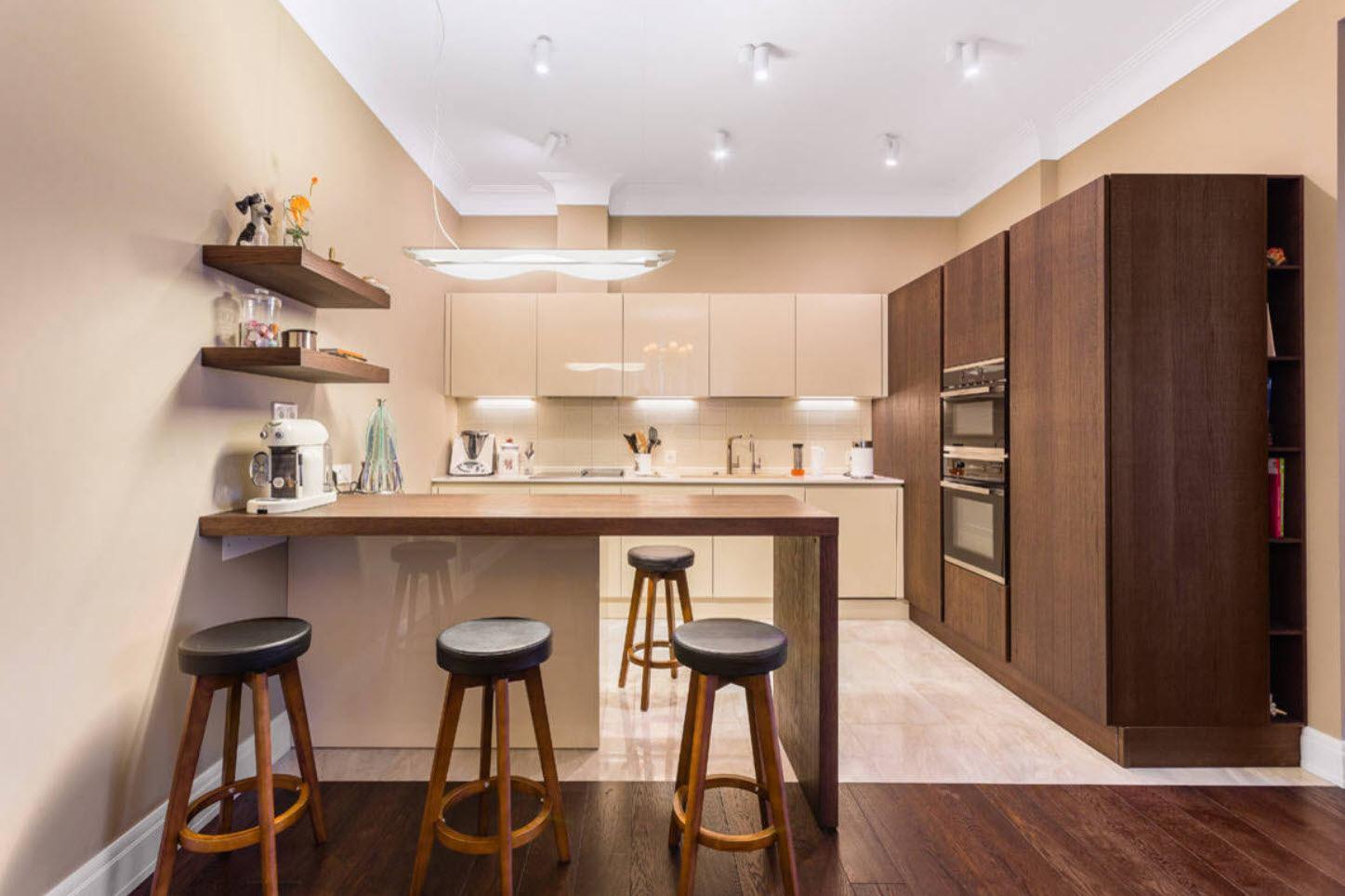 Noble dark hard wood color for splendid modern kitchen space