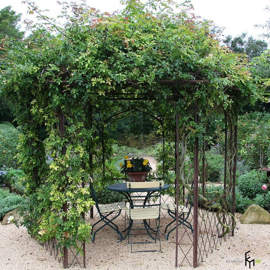 Greenery formed alcove at the garden of summer house