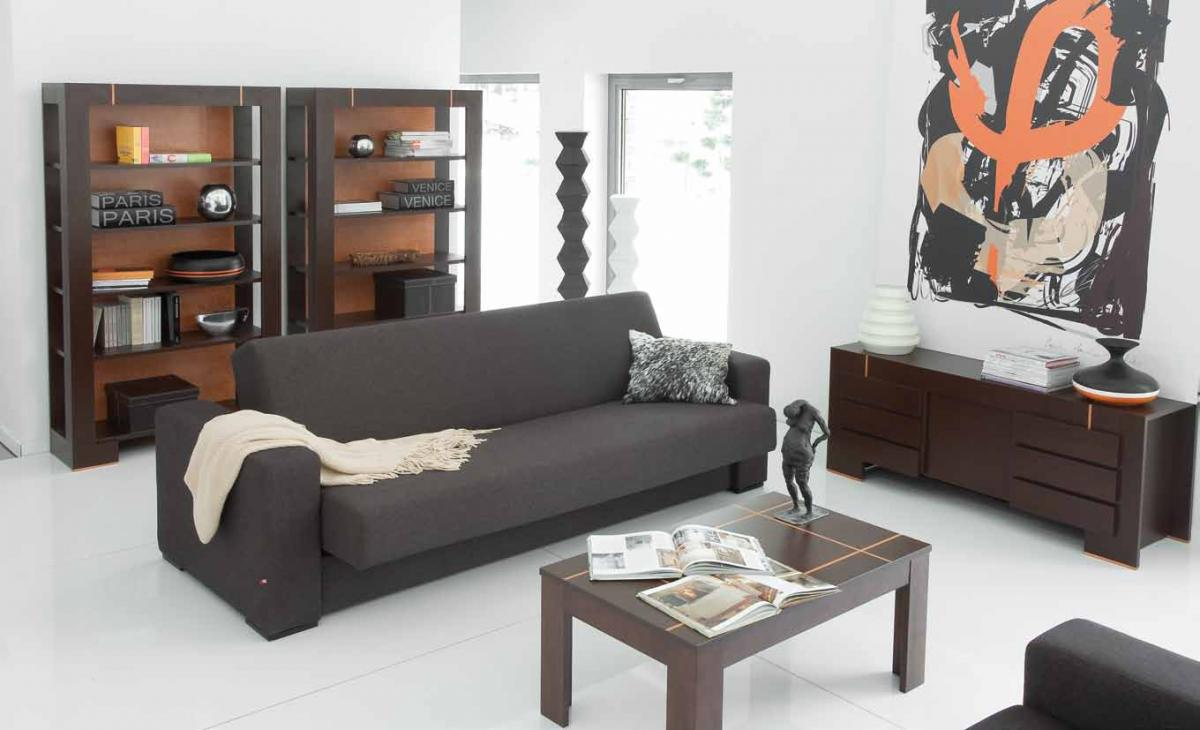 Black Sofa: Elegant and Original Design for Flawless Interior. Dark sofa and wooden elements of decor for white room