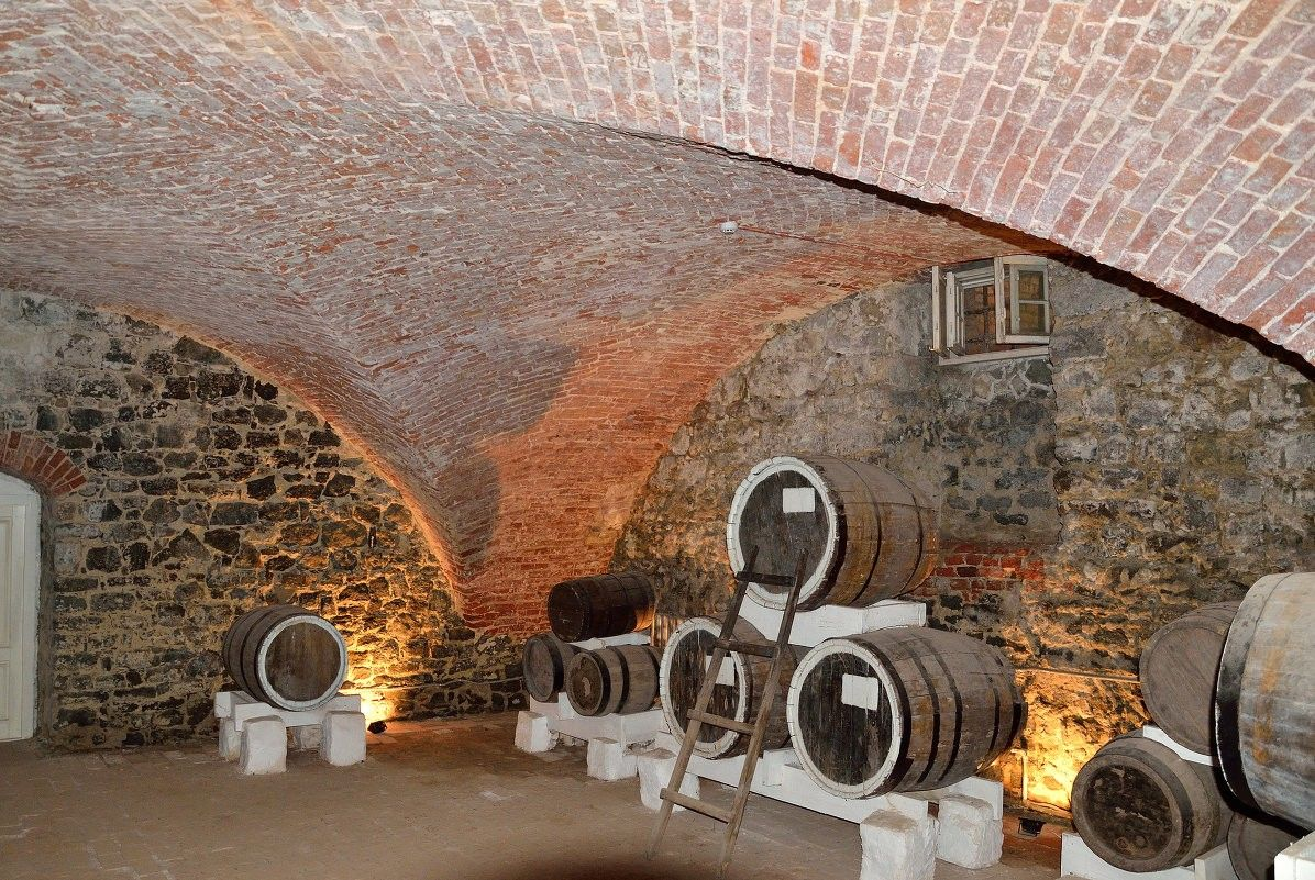 Vaulted Ceiling: Main Principles of Constructing and Finishing. Classic vine cellar