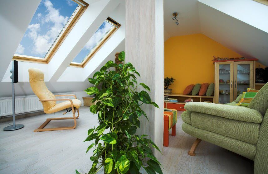 Skylights for spacious white attic with plants