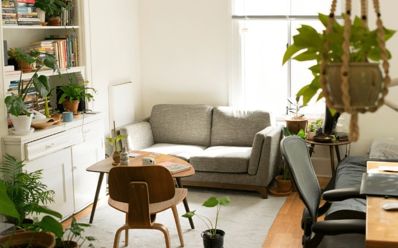 How to Improve Air Quality in Your Home (and Why You Should). Contemporyr styled interior with fray sofa and plants