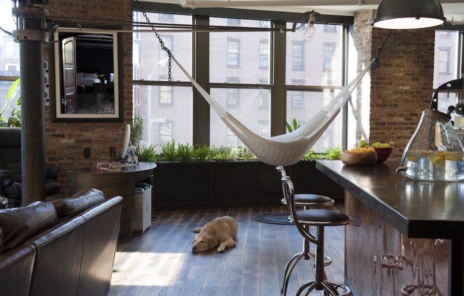 Hammock in the modern designed living room
