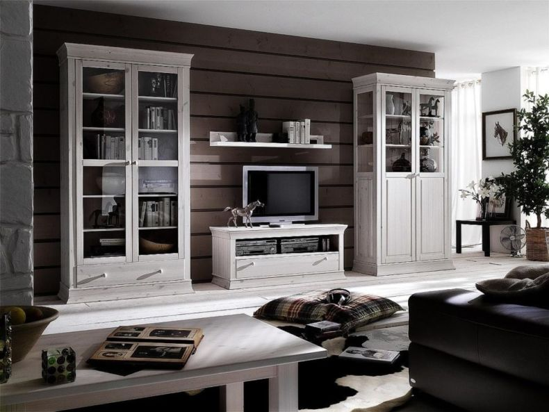 White Living Room: Different Style Interiors with Photos. Dark wooden accent wall and white classic furniture