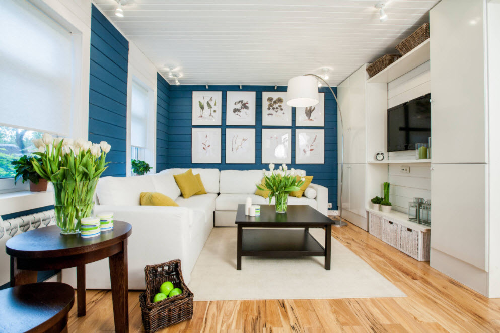Blue colored living room walls and laminated floor