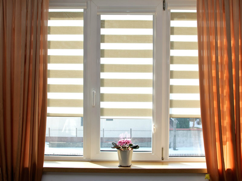 Day-/night blinds and curtains at the large window