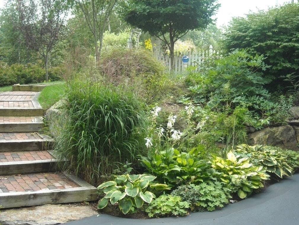 Nice sloped backyard landscpae design