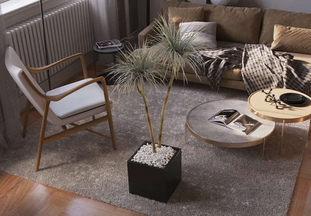 8 Best Large House Plants to Use for Décor. Nice calm Oriental philosophy of the living room with dragon tree in the pot with pebbles