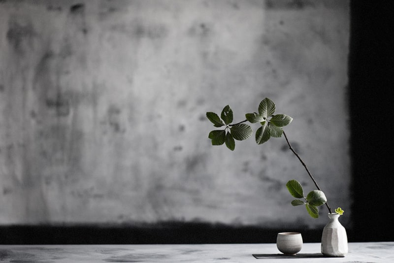 Exotic Wabi Sabi Interior Design Style: Beautiful Minimalism. Gray plastered wall with stains