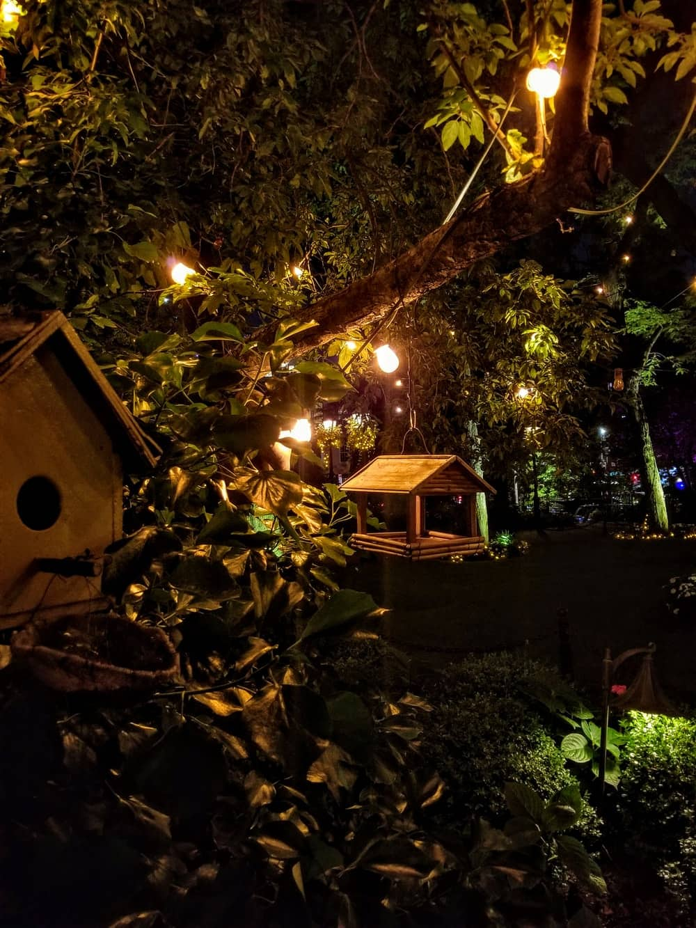Extremely Easy Yard Lighting Tips. Night at the landplot with mangers