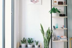 How to Design Your New Home before Moving. Great minimalistic interior in white full of plants