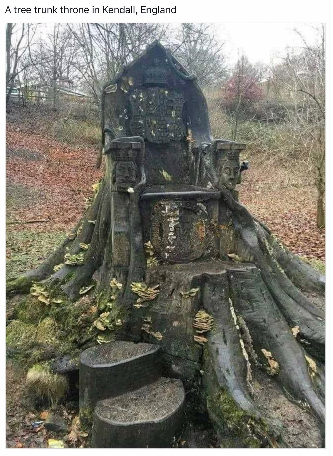 Great Ideas for Your Garden With Tree Stumps. Tree trunk throne in UK