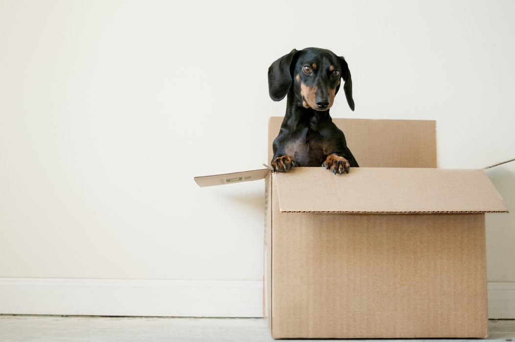 Moving to Your First Apartment? Tips on What You'll Need. Unboxing your things after moving