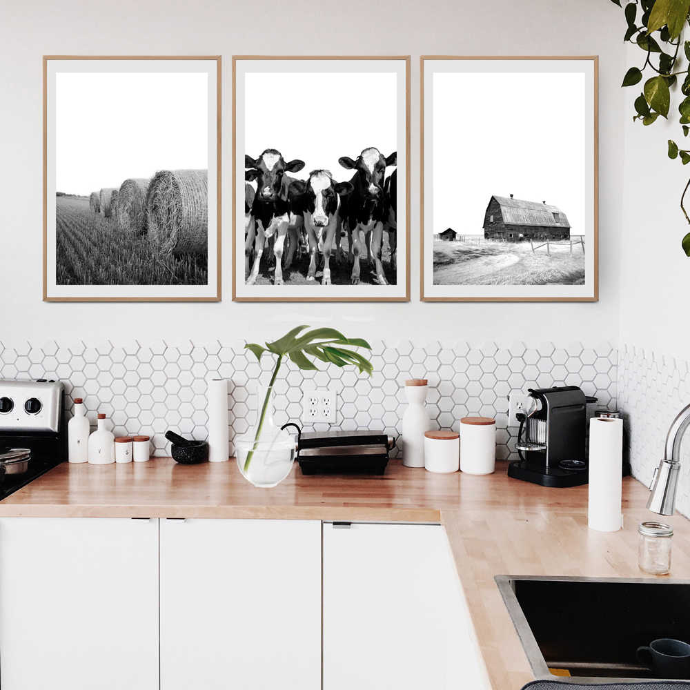 Contrasting black and white pictures within the modern minimalistic interior