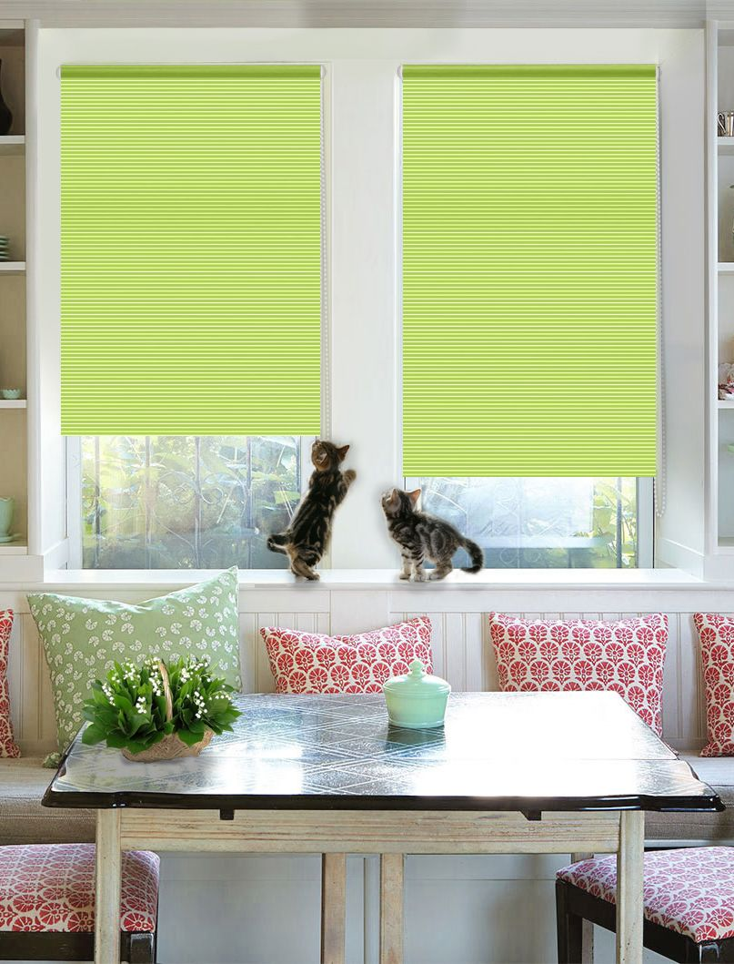 Lime colored roller blinds for pinky colored modern dining zone