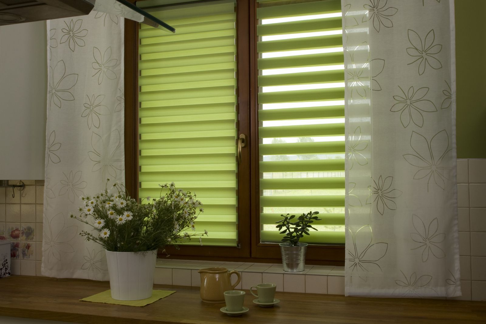 Roller Blinds: Practical and Good Looking Window Treatment. Jungle green day night curtains