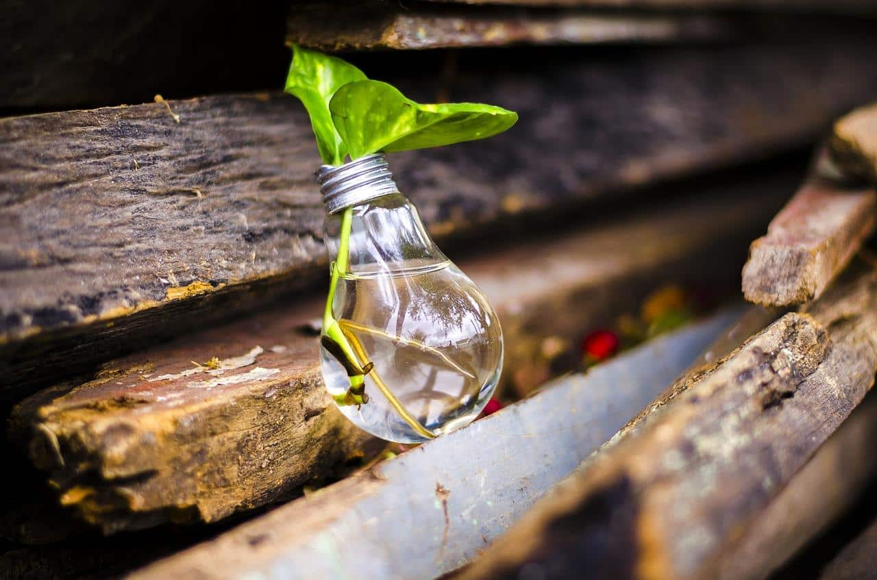 Where To Recycle Air Conditioners: Everything You Need To Know. Green option to use an old lamp