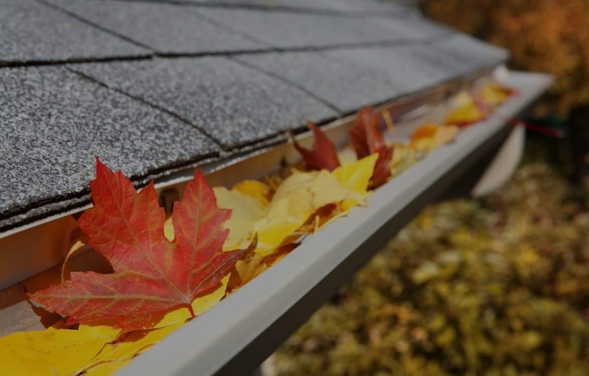 5 Effective Tips for Renovating Your Home's Roof. The roof gutters clogged with fall leaves